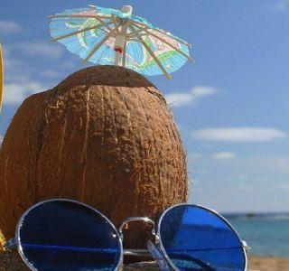 5 причини зошто да не заминете на летување без спирулина
